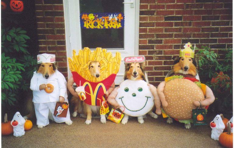 Doggie Style Adorable Halloween Costumes for Dogs & Doggie Style: Adorable Halloween Costumes for Dogs | Lauren Messiah