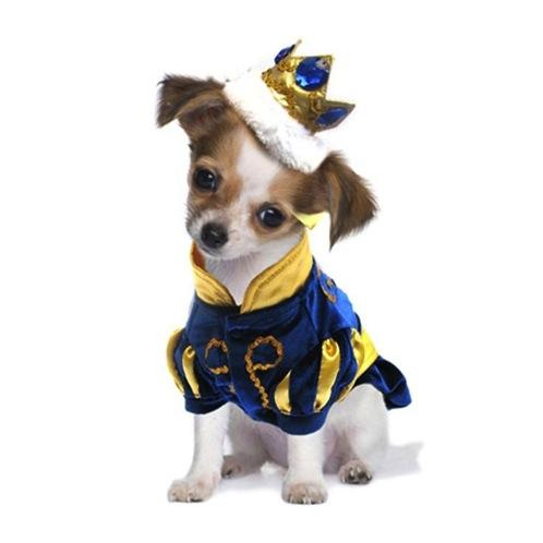 prince dog costume