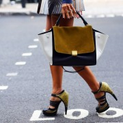Celine+bag+-+Jason+Wu+shoes